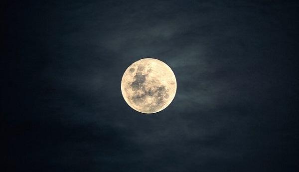 月とスッポン01